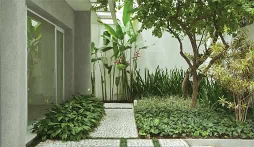 plantas para jardim vertical meia sombra : plantas para jardim vertical meia sombra:Jardim cheio de sombra com plantas de diferentes tons de verde