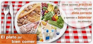 comida vegana como fazer