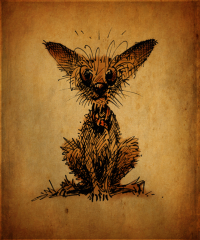 chihuahua, drawing of chihuahua, paul stickland,