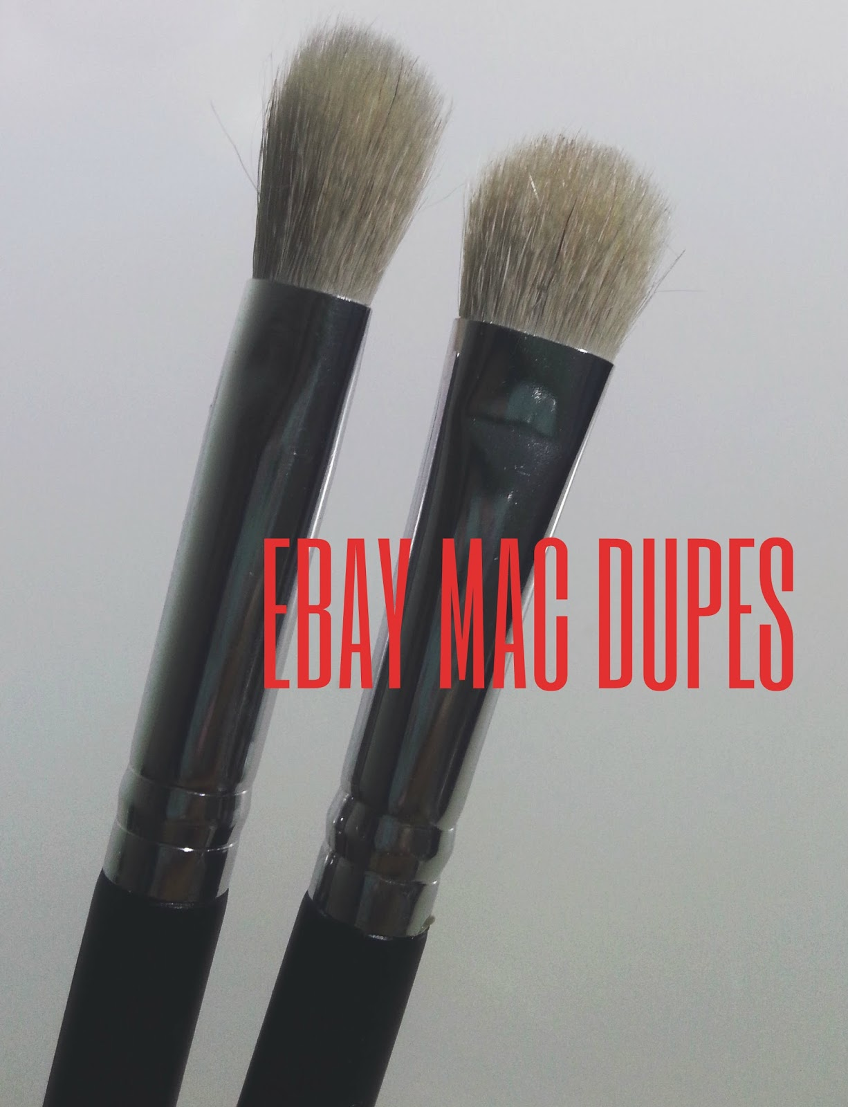 MAC EBAY Brushes Dupe