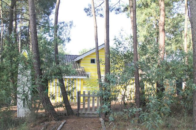 twodaysroadtrip,lacanau,gironde,foret de pins, landes,roadtrip,maison en bois,cabanes, beach shack,gypse living,gypse travel