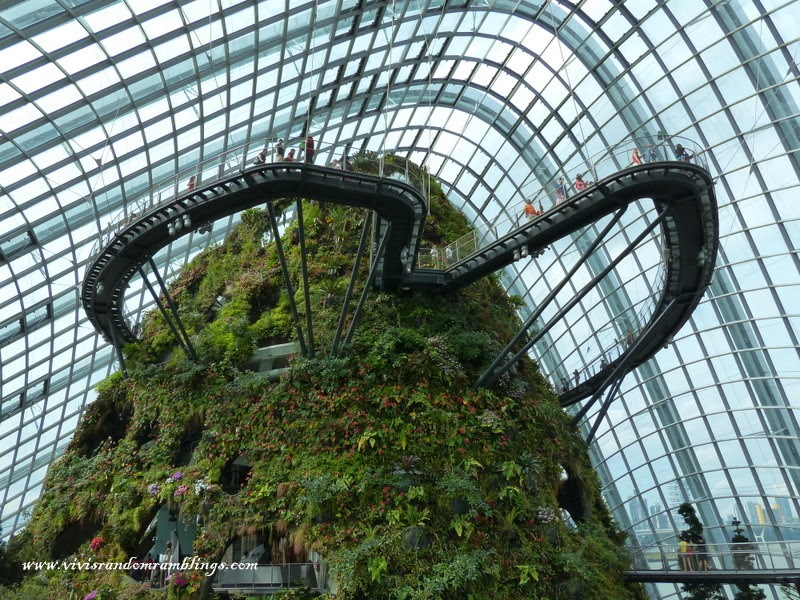 Cloud Forest Gardens by the Bay