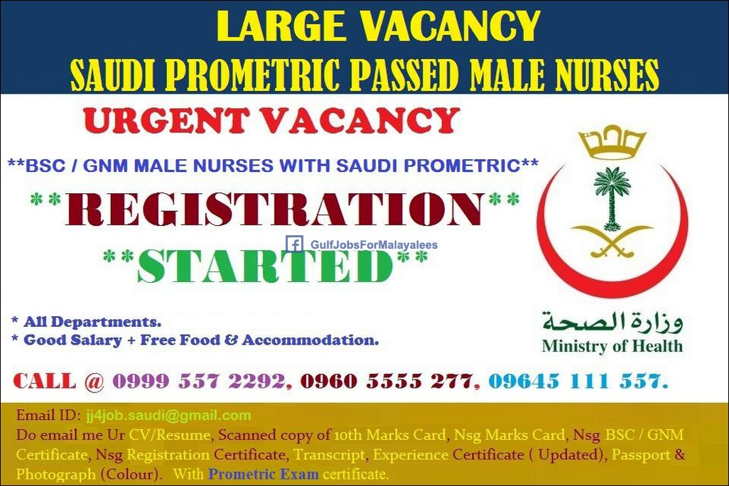Resume for bsc nursing freshers