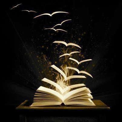 livro, livros, book, books,
