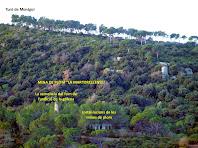 """Aproximació a les instal·lacions de la mina de plom """"La Martorellense"""""""