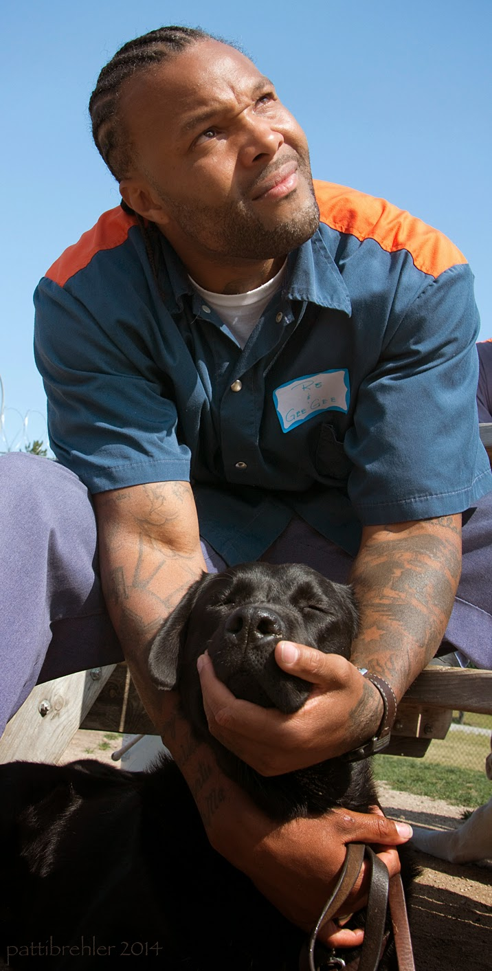 An african american man dressed in the blue prison uniform is sitting on a picnic bench leaning over a black lab. The man's arms and hands are cradling the dog's chest and snout, he is holding a leash in his right hand at the dog's chest, his left hand is under the dog's snout. The man is looking up to the right with a pained expression on his face. It is a bright sunny day with a bright blue sky behind him. The dog's eyes are closed.