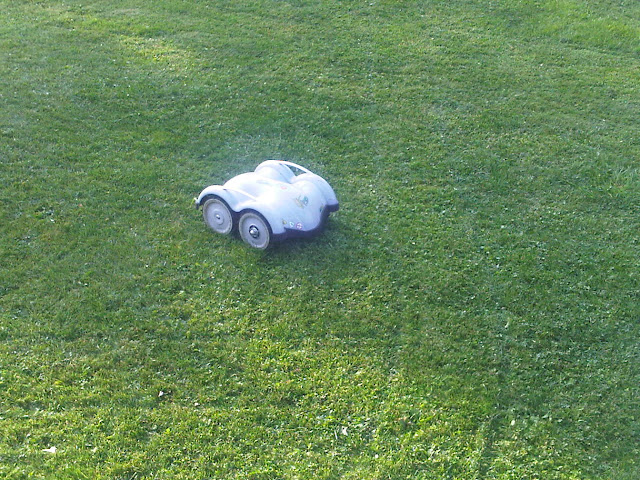 Wiper Rasen-Roboter