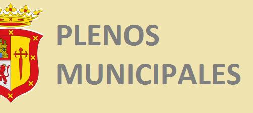 ACCESO DIRECTO A PLENOS MUNICIPALES