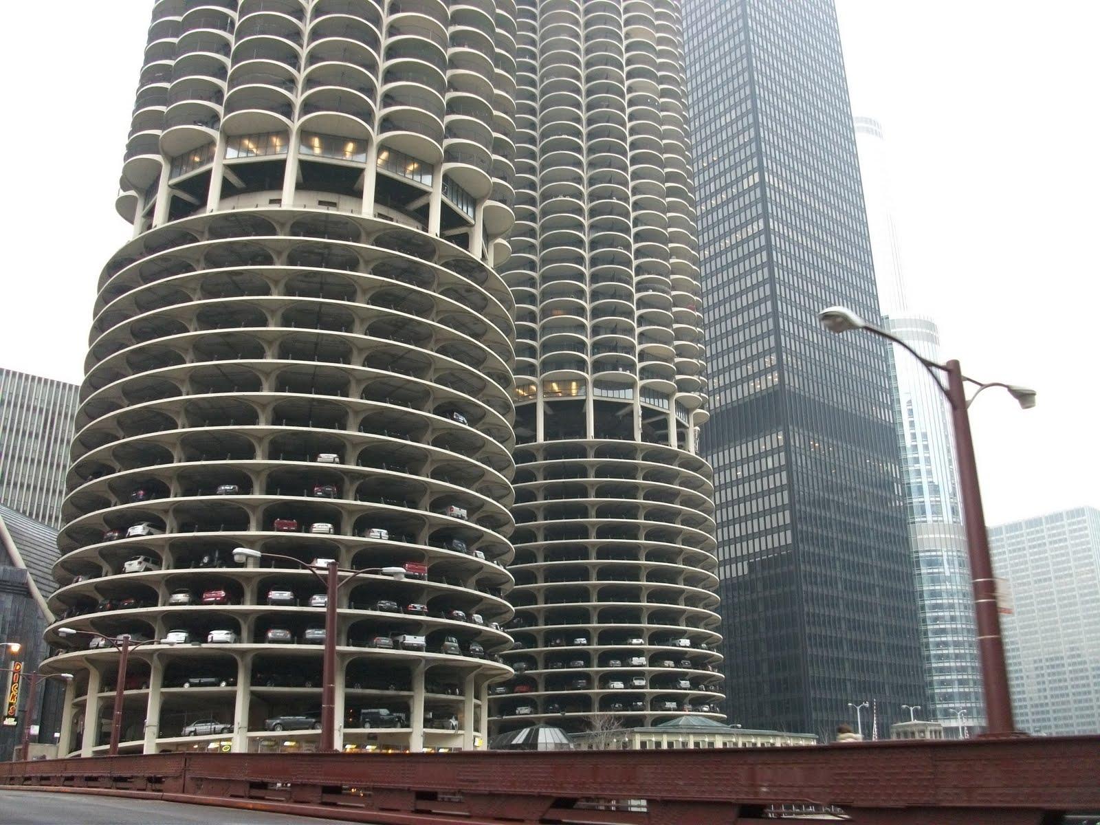 Une paire de zor 39 sur l 39 caillou chicago 1 for Caillou va a la piscine en francais