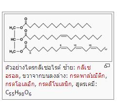 ไขมันไตรกลีเซอไรด์ (Triglyceride)