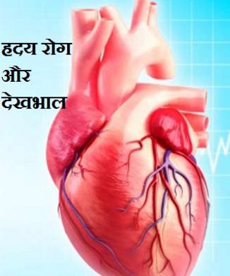 Bel ka Deshi Ghreloo Ilaaj Mein Prayog