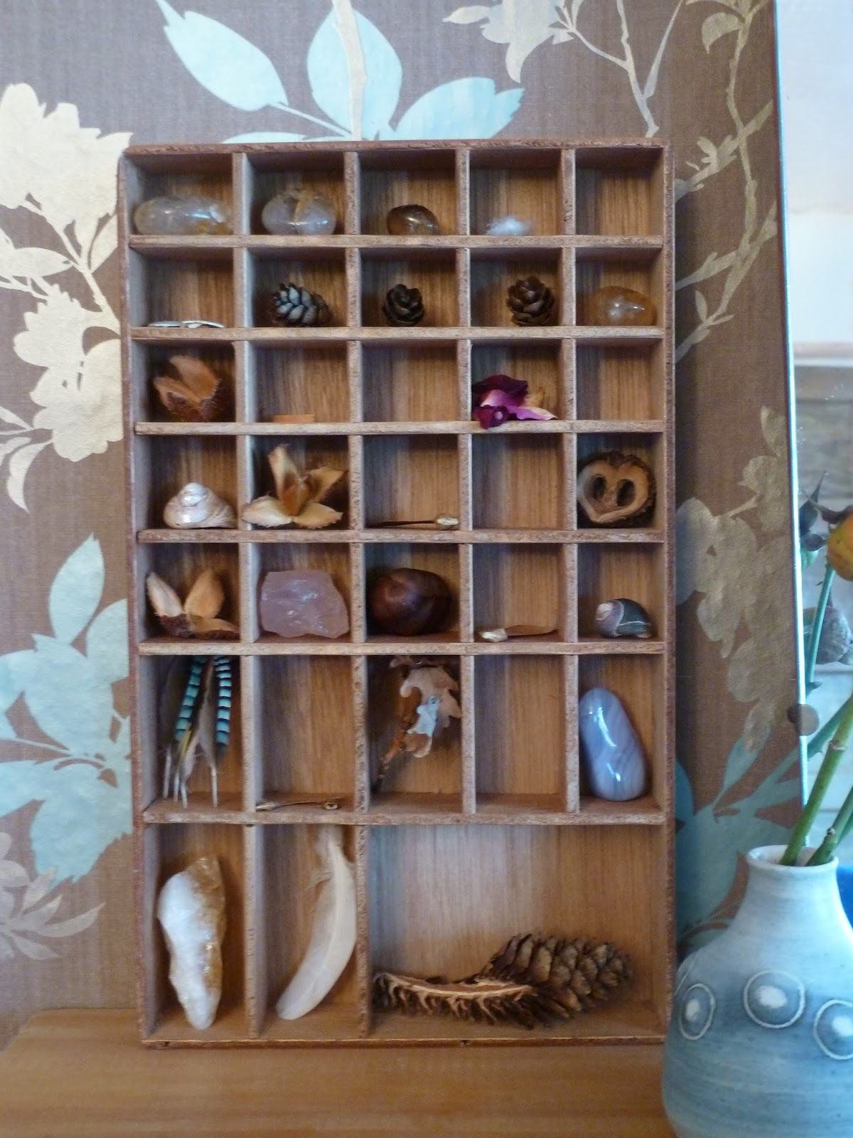 Nature collected on treasury shelf