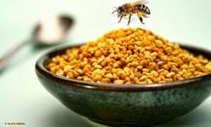 ,şifalı bitkiler,polen,arı sütü,