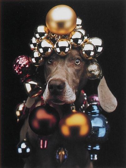 ARTSampFOOD Museum Shopping Holiday Gift Guide 2012 1