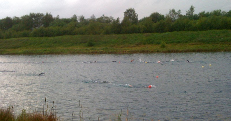 Bluebell Cottage Gardens And Nursery An Open Water Swim