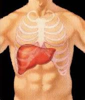 Alimentação para manter seu fígado saudável