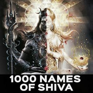 1008 names of lord shiva in hindi pdf