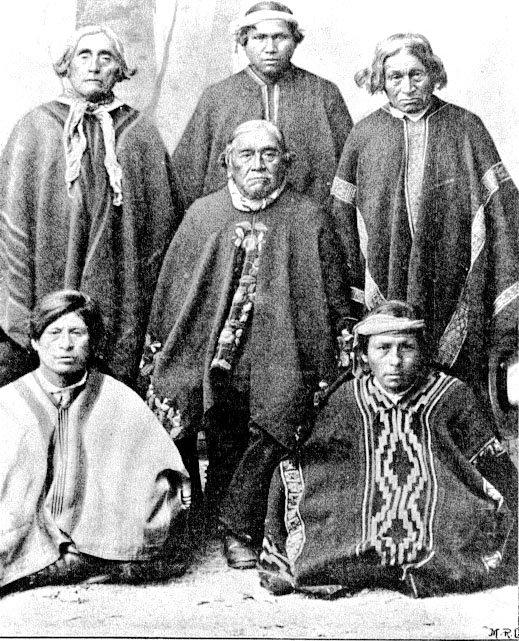 pueblos originarios chilenos
