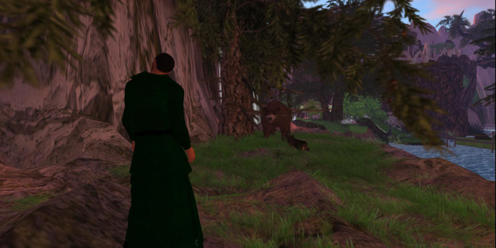 Winter Encounters a Bear