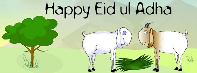 Goat Lovers On Eid Ul Adha
