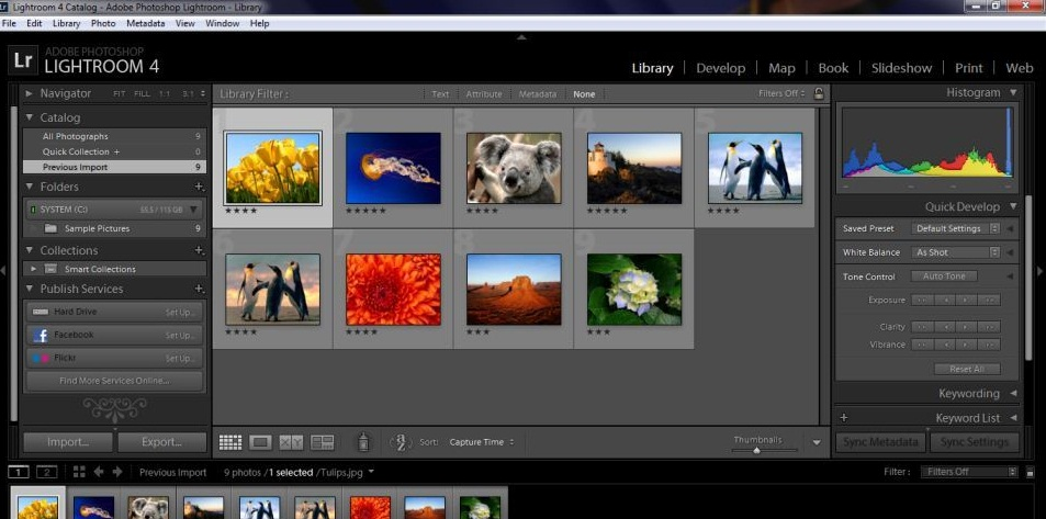 Screenshoot, Link MediaFire, Download Adobe Photoshop Lightroom 4 Full Version With Crack Keygen | Mediafire