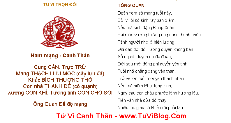 Tu Vi Canh Than Tron Doi