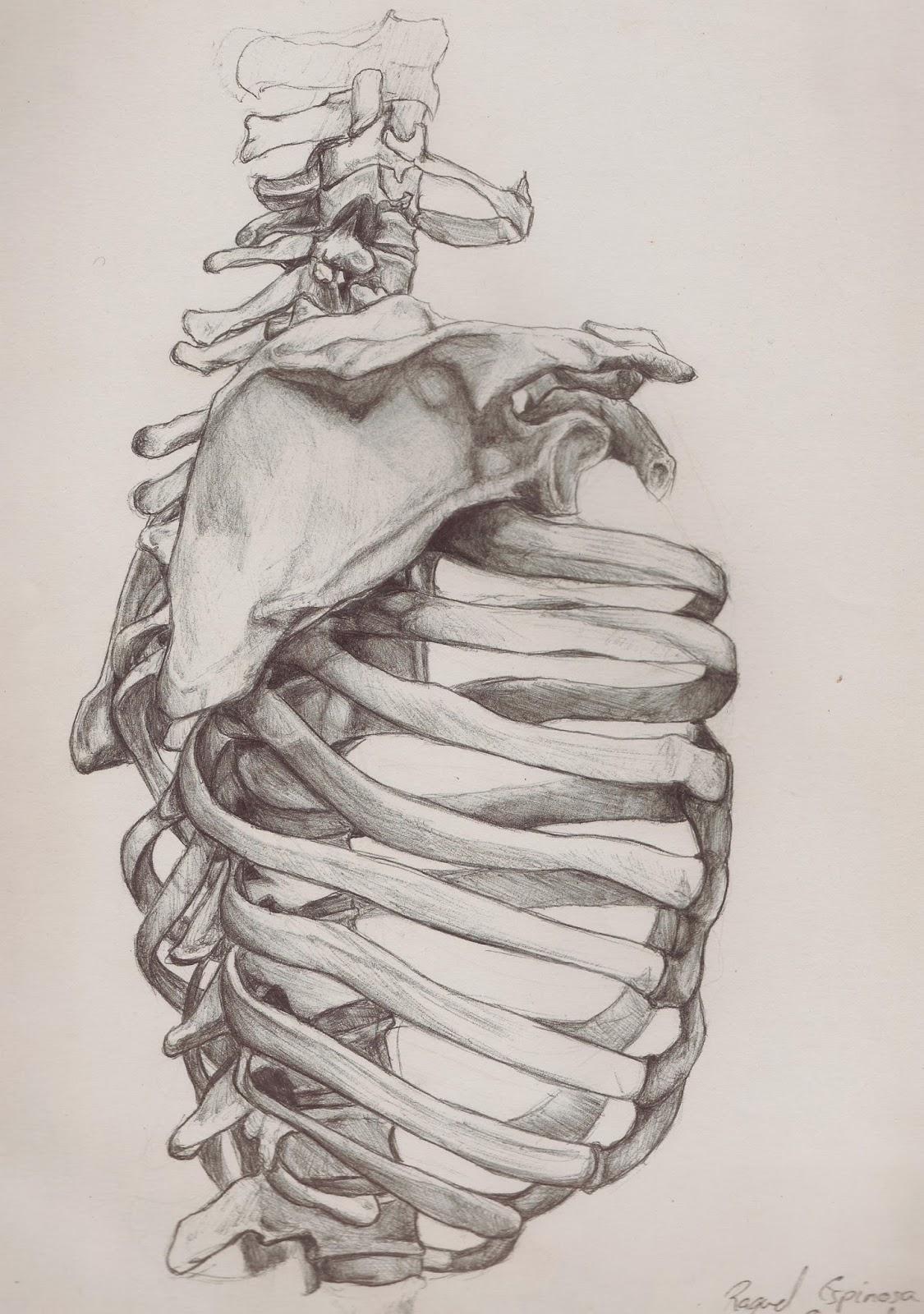 Raquel Espinosa´s Art: Hasta los Huesos III