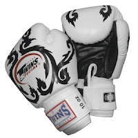 Twins Muay Thai Boxing Gloves7