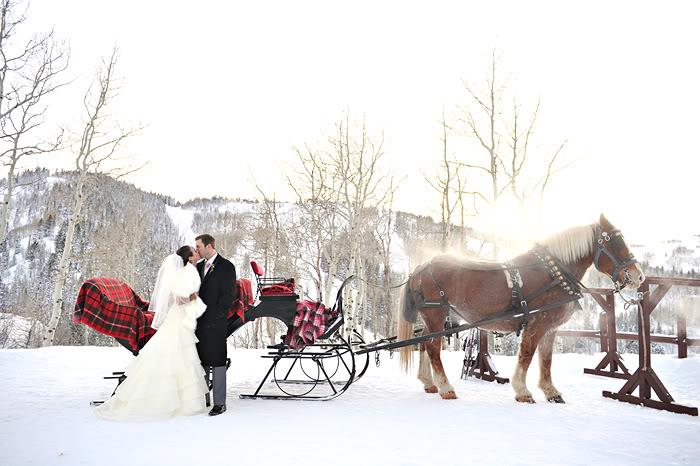 pin snow ride carriage - photo #24