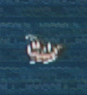 It's weird, but all Squaresoft boat sprites look basically alike without BEING exactly alike.