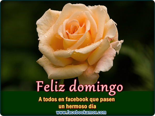 feliz domingo para compartir en facebook