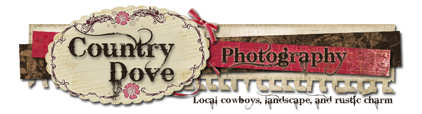 Country Dove Photography