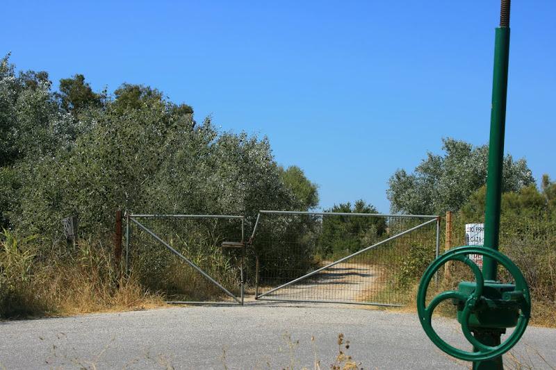 Puertas en el campo