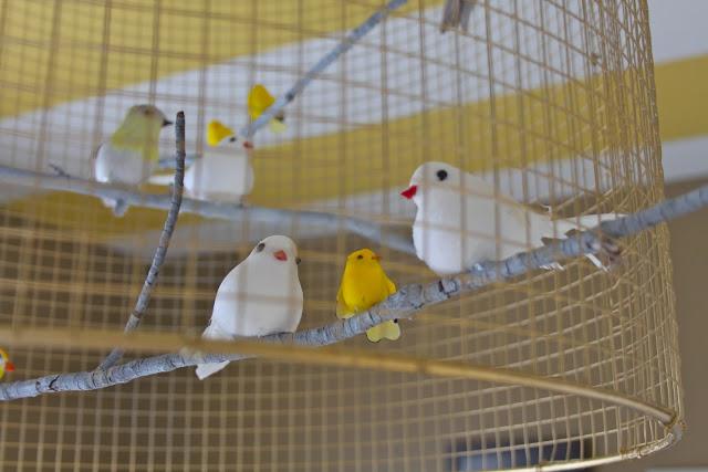 bird cage filament