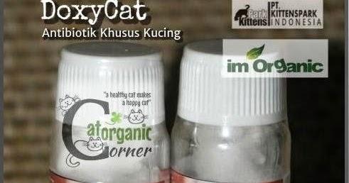 Catorganic Corner Doxycat Obat