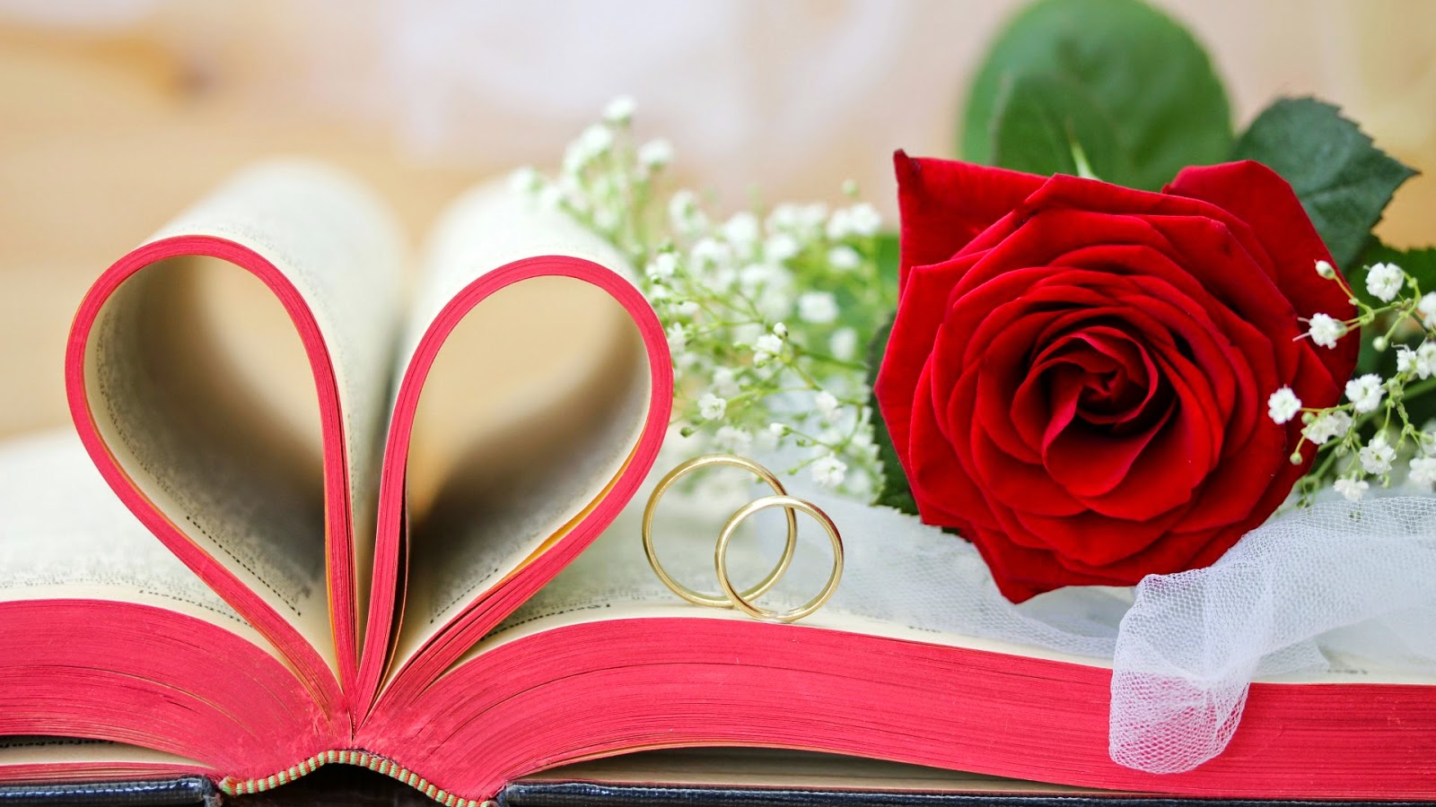 Book Heart Rose Wallpaper