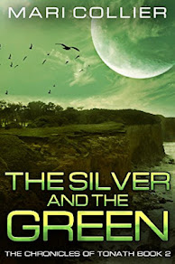 July 2018 Book Cover Contes Winner : The Silver and The Green