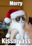 These are hilarious! I love Tard, the Grumpy Cat!