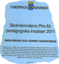 Pedagogiska priset 2011