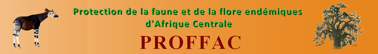 Protection de la faune et de la flore endémiques d'Afrique Centrale - PROFFAC