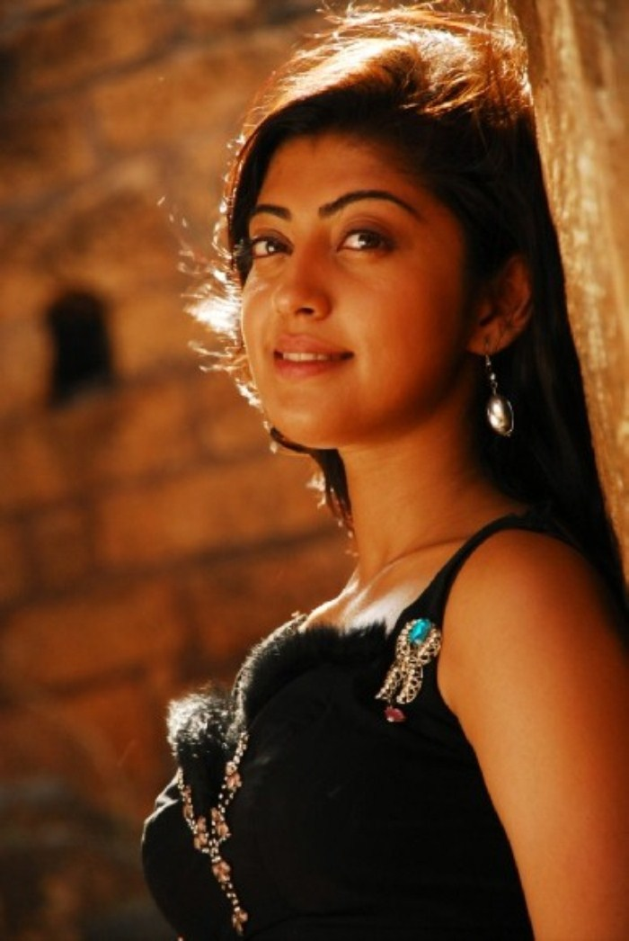 pranitha new , pranitha spicy actress pics