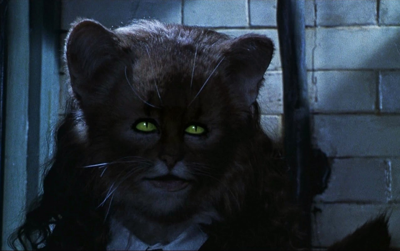 What Was Hermione S Cat Name