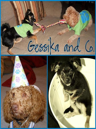 Gessika and Company