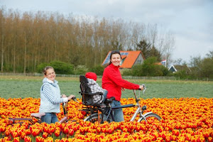 The Netherlands rises to sixth place on World Happiness Index 2017