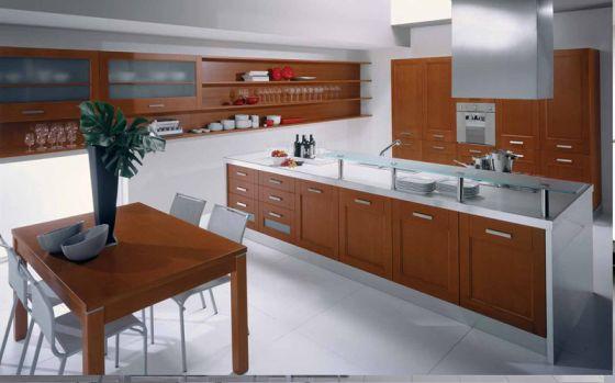 Cabinets for kitchen 2011 most popular modern kitchen for Best kitchen designs 2011