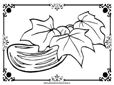 lembar mewarnai gambar sayur ketimun