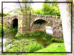 A Ponte dos Brozos