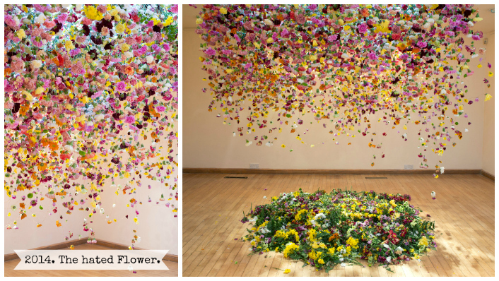 Rebecca Louise Law. The hated flower.
