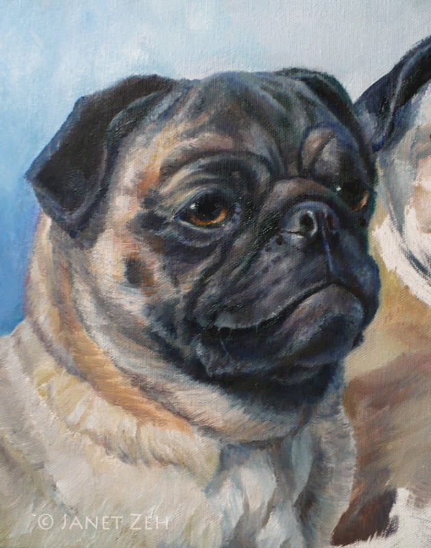 Grommet - pug oil pet portrait
