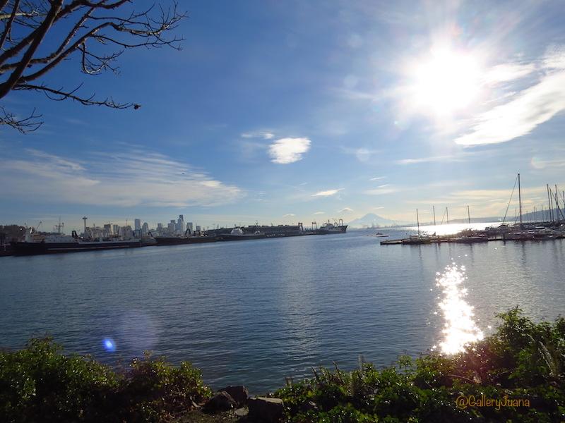 elliott bay trail, elliott bay marina